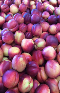 Venus Nectarines Jackson Orchards - New Zealand Orchard
