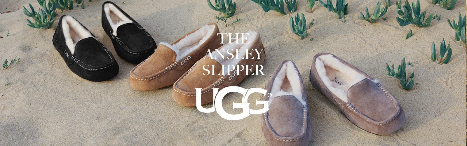 Shop UGG desktop
