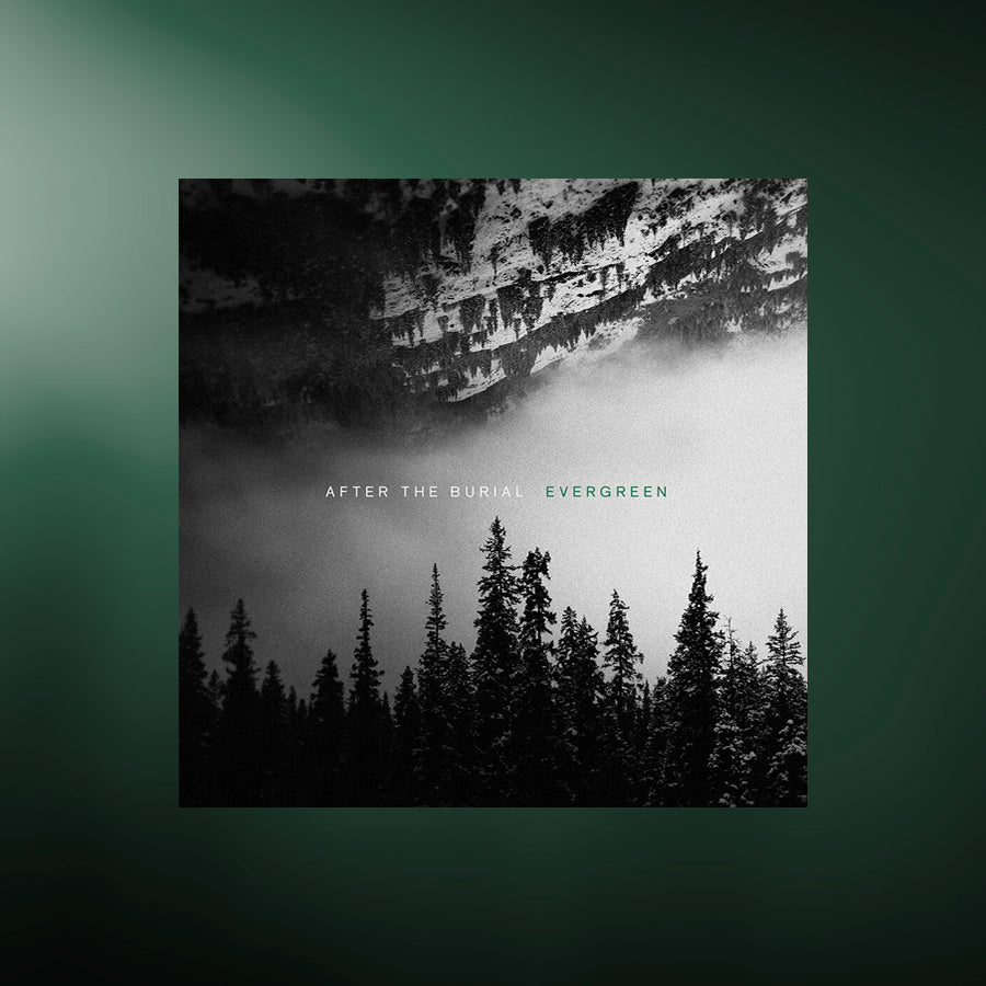 After the Burial - Evergreen [STEMS]