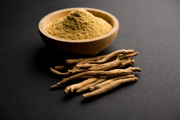 Teelixir Organic Ashwagandha Benefits for Men and Women