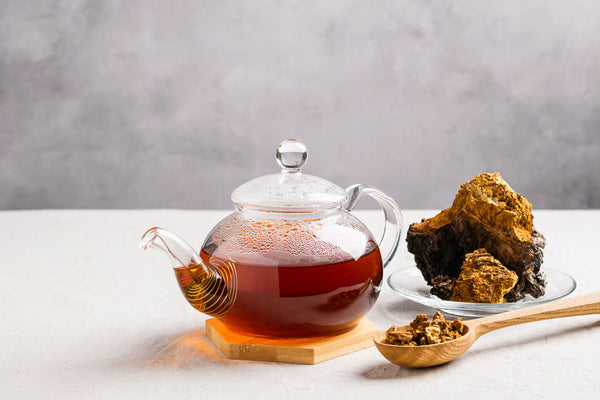 Teelixir wild Chaga Mushroom Tea Explained buy online in Australia - what does chaga tea taste like?
