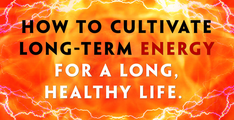 Teelixir Blog - How To Cultivate Long-Term Energy