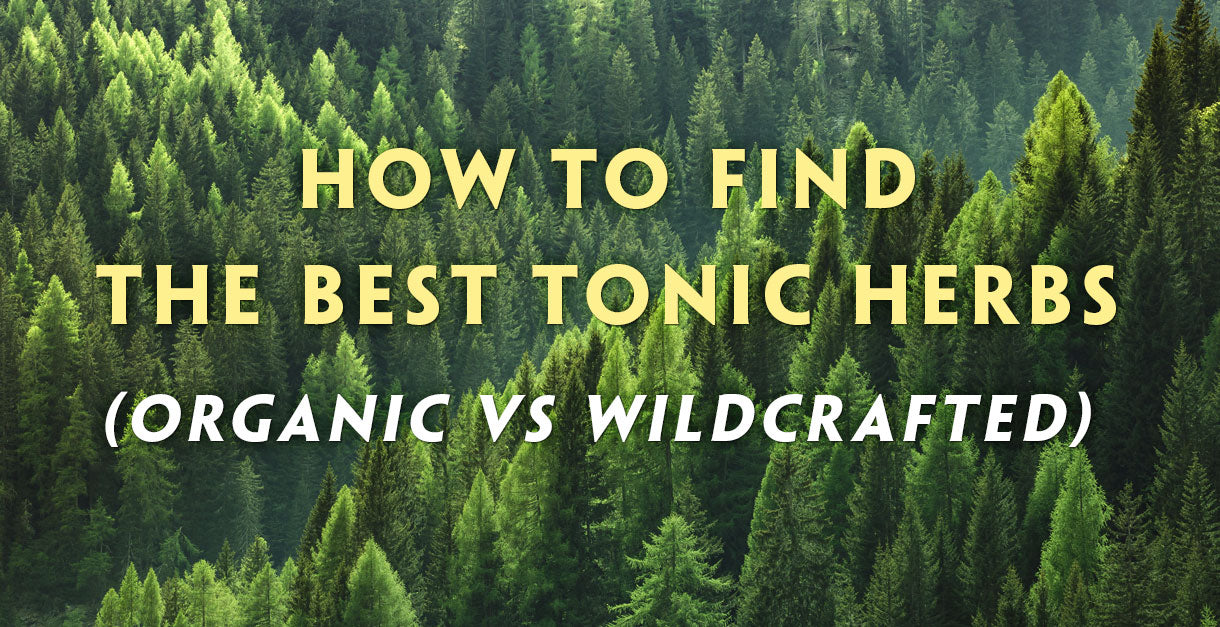 How to find the best tonic herbs (Certified Organic vs Wildcrafted Herbs) Teelixir