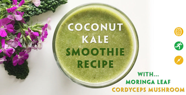 Teelixir Coconut Kale Smoothie Recipe with Cordyceps sinensis mushroom extract and Organic Moringa leaf powder.