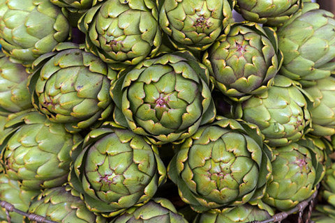 Globe Artichoke herbs for liver health