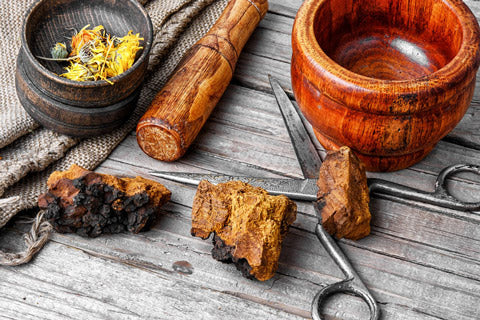 how much chaga tea should you drink per day