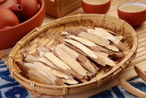 Astragalus root herbs for liver health
