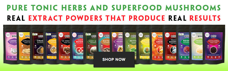 Teelixir Tonic Herbs and Certified Organic Superfood Medicinal Mushroom Extracts Powders
