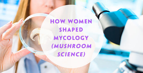 How Women Shaped Mycology (Mushroom Science) Teelixir Blog Article Superfood Medicinal Mushroom