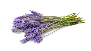 Teelixir Lavender essential oil for beauty detox clay mask