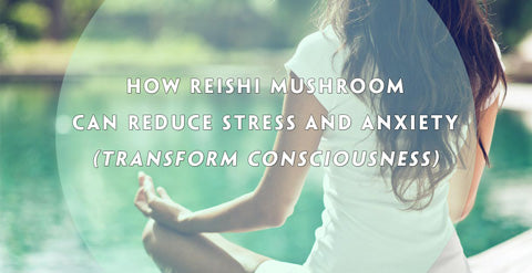 How Reishi Mushroom Ganoderma lucidum Can Reduce Stress and Anxiety (Transform Your Consciousness)