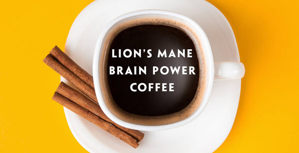 Lion's Mane Superfood Medicinal Mushroom Brain boosting Power Coffee Recipe