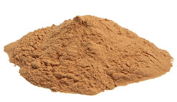 Small dose of superfood medicinal mushroom extract powder to support and heal digestion and gut health
