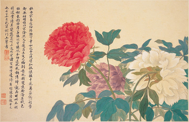 The King of Flowers: Six Things You Might Not Know About the Precious Peony