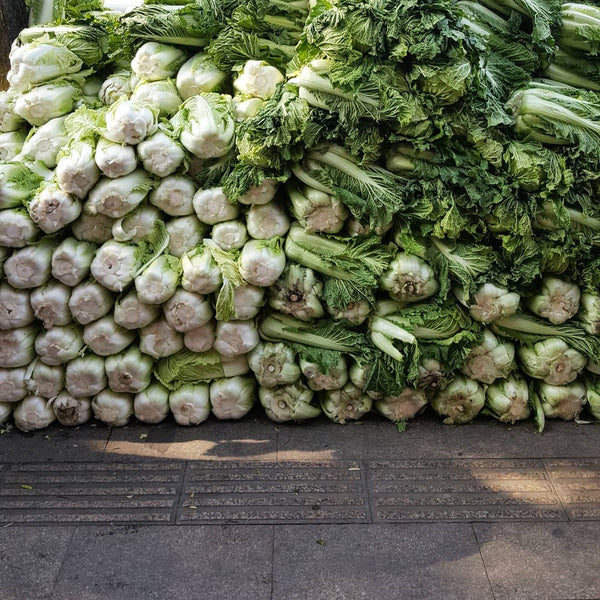 Huge stockpile of cabbages in China