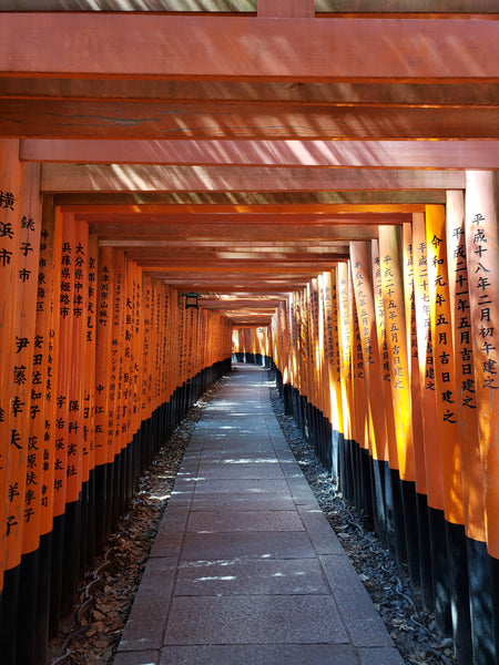 Beautiful orange gates of Fushimi Inari shrine