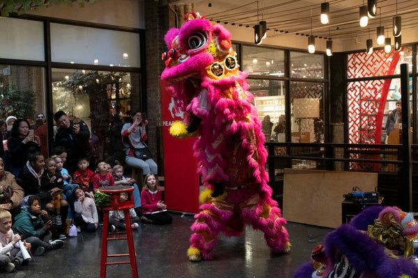 Two lion dancers standing upright