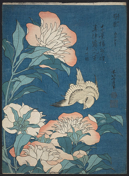Japanese woodblock print of peonies with canary