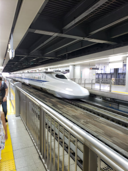 A bullet train arrives in a station