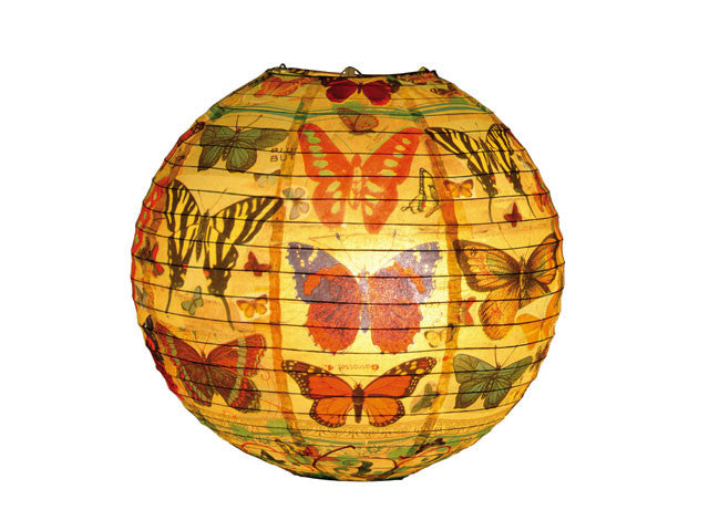 Printed Paper Lantern - Butterfly (13.75in.)