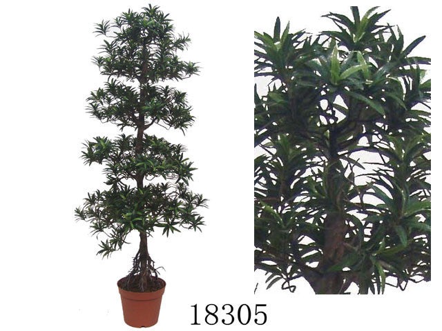 "Artificial Plant - Pine Tree (70"" H)"