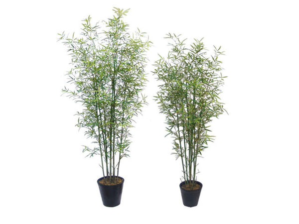 Artificial Plant - Lady Bamboo with Pot