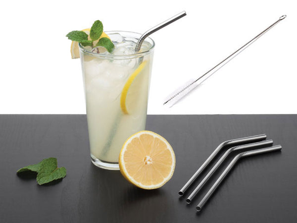 Stainless Steel Drinking Straw (Set of 4)