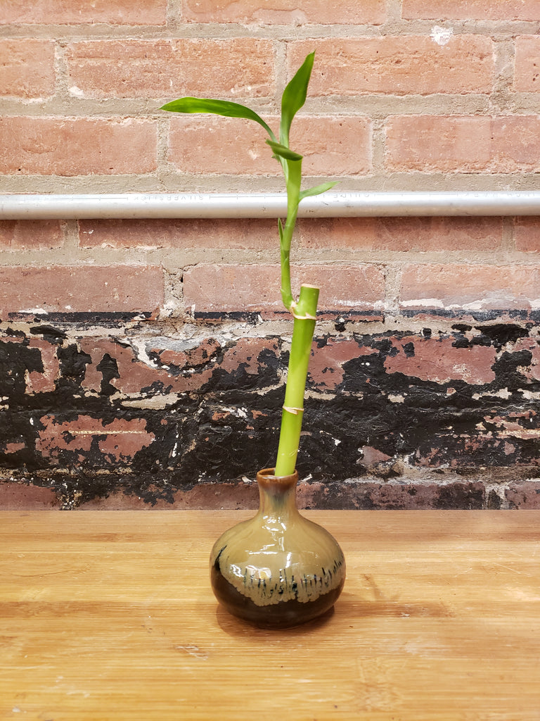 Japanese Bud Vase with One Bamboo Stalk