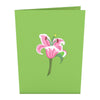 Exterior of green card with pink lily design