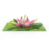 Green pop-up card with beautiful pink lily