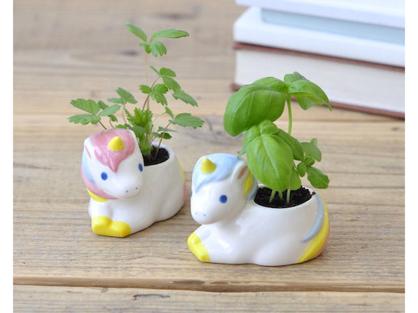 Unicorn Green - Growing Garden