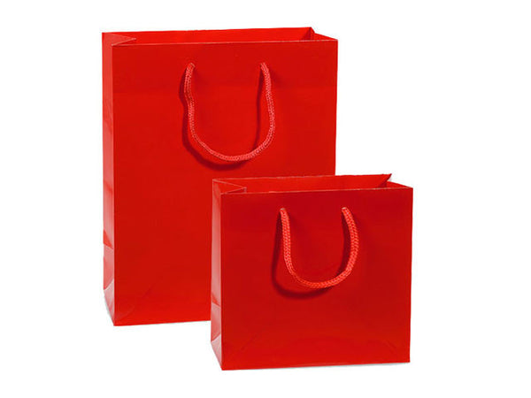 Heavyweight Paper Gift Bag