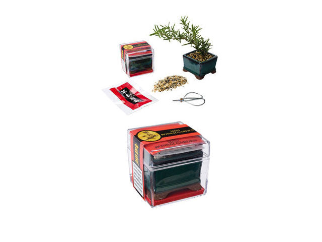 Mini Bonsai Basic Garden Kit