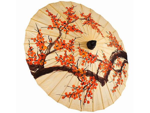Hand Painted Blossoms Design Paper Parasol