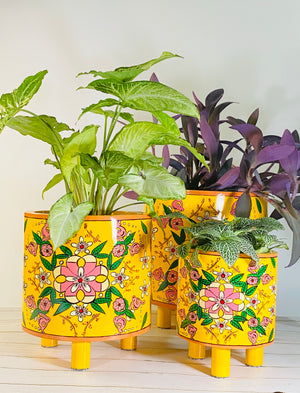 Open image in slideshow, Pintado Planter Pot