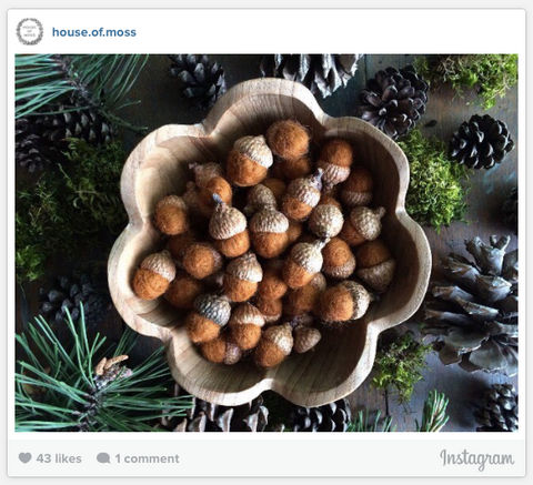 House of Moss Instagram Photo - Bowl of Brown Acorns