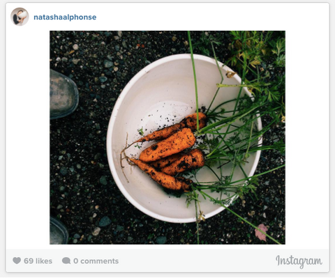 Natasha Alphonse Instagram Photo - Bowl with Carrots