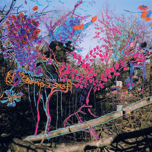 <b>Animal Collective </b><br><i>Here Comes The Indian</i>