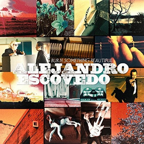 <b>Alejandro Escovedo </b><br><i>Burn Something Beautiful</i>