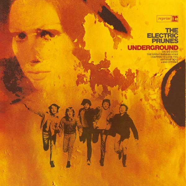the electric prunes underground import plaid room records plaid room records