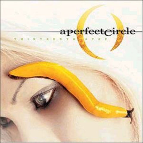 <b>A Perfect Circle </b><br><i>Thirteenth Step</i>