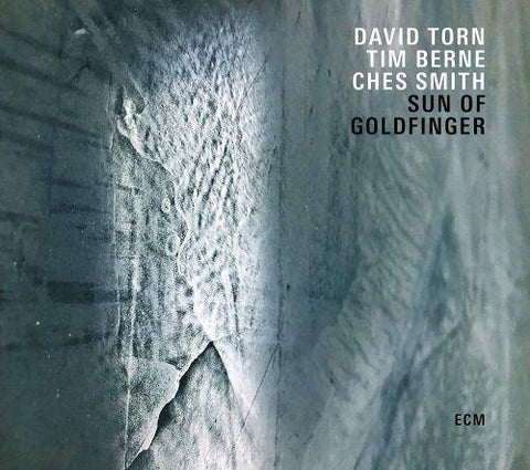 <b>David Torn / Tim Berne / Ches Smith </b><br><i>Sun Of Goldfinger</i>