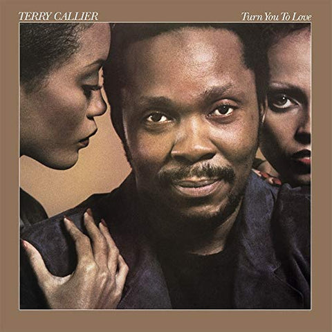 <b>Terry Callier </b><br><i>Turn You To Love</i>