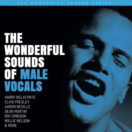 <b>Various </b><br><i>The Wonderful Sounds Of Male Vocals</i>