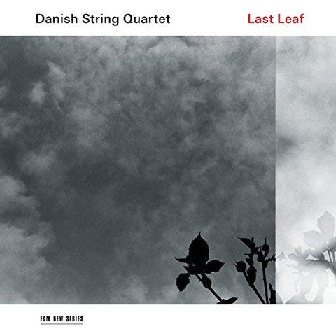<b>Danish String Quartet </b><br><i>Last Leaf</i>