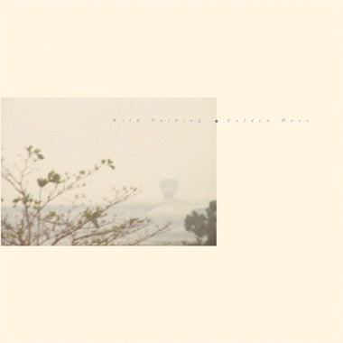 <b>Wild Nothing </b><br><i>Golden Haze [Clear Smoke Vinyl]</i>