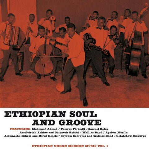 <b>Various </b><br><i>Ethiopian Soul And Groove - Ethiopian Urban Modern Music Vol. 1</i>