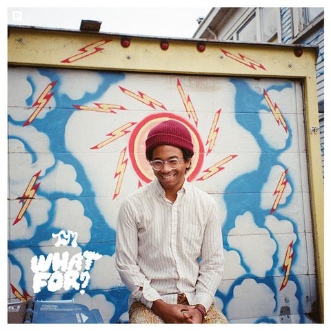 <b>Toro Y Moi </b><br><i>What For?</i>