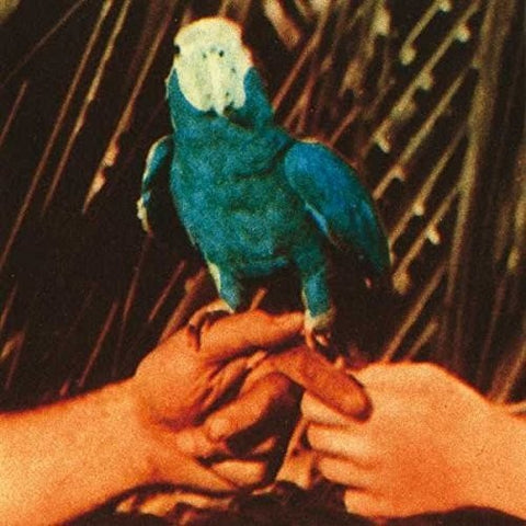 <b>Andrew Bird </b><br><i>Are You Serious</i>