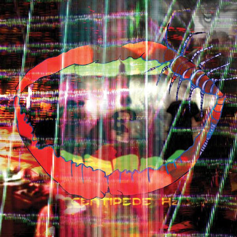 <b>Animal Collective </b><br><i>Centipede Hz</i>